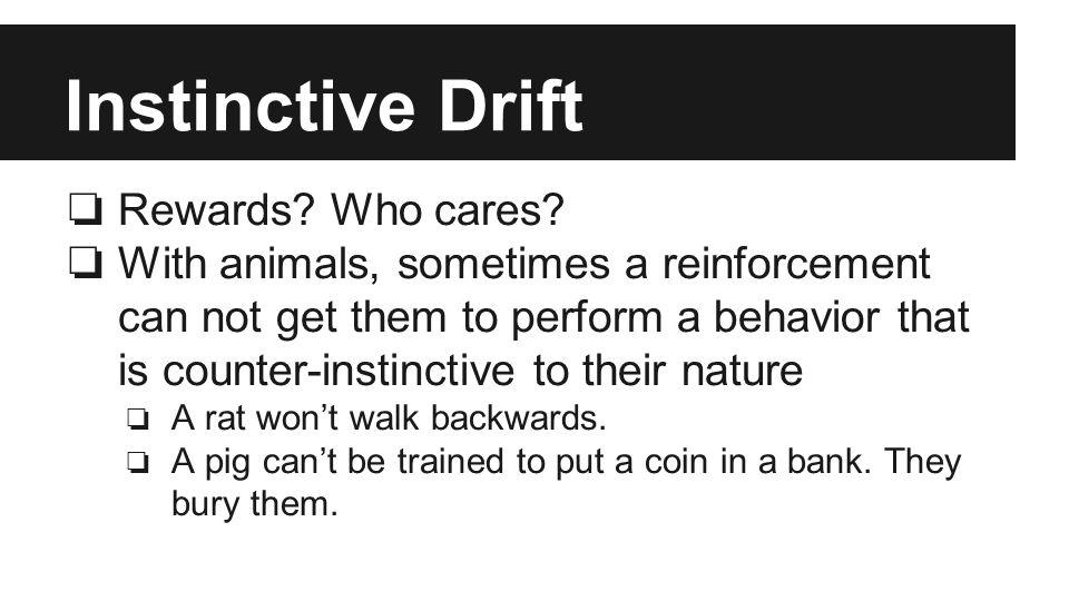 Instinctive Drift ❏ Rewards. Who cares.