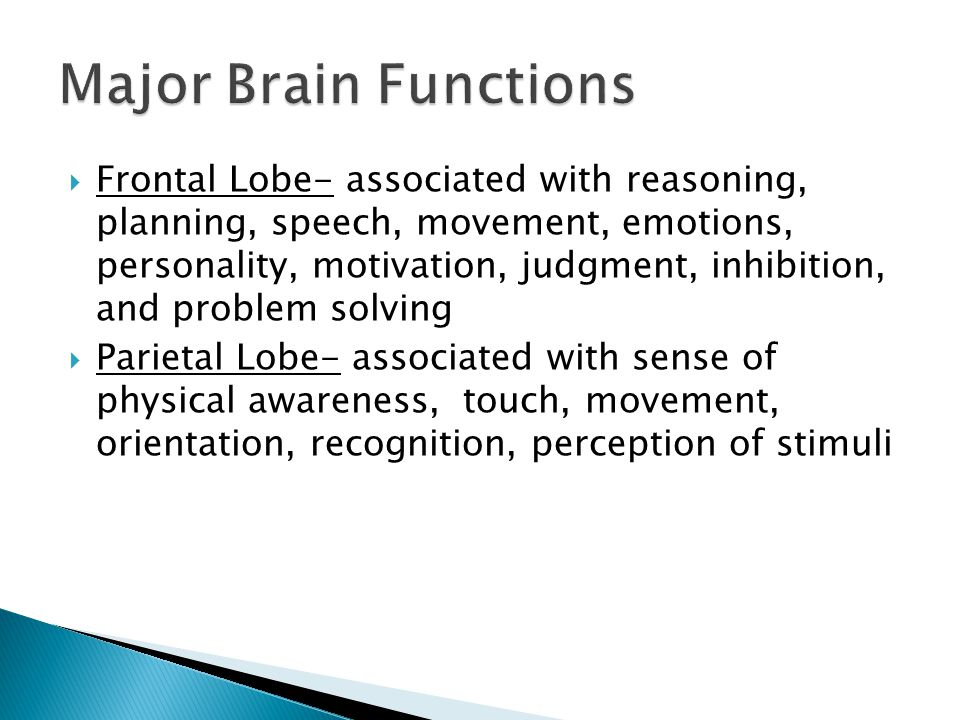  Frontal Lobe- associated with reasoning, planning, speech, movement, emotions, personality, motivation, judgment, inhibition, and problem solving  Parietal Lobe- associated with sense of physical awareness, touch, movement, orientation, recognition, perception of stimuli