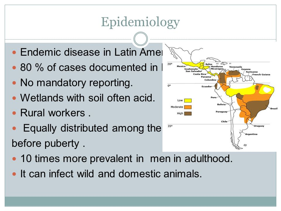 Epidemiology Endemic disease in Latin America. 80 % of cases documented in Brazil. No mandatory reporting. Wetlands with soil often acid. Rural worker