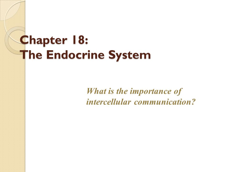 Chapter 18: The Endocrine System What is the importance of intercellular communication?