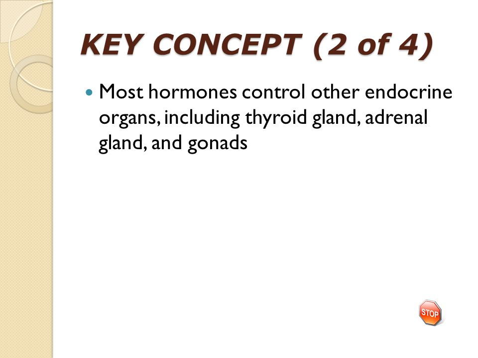 KEY CONCEPT (2 of 4) Most hormones control other endocrine organs, including thyroid gland, adrenal gland, and gonads