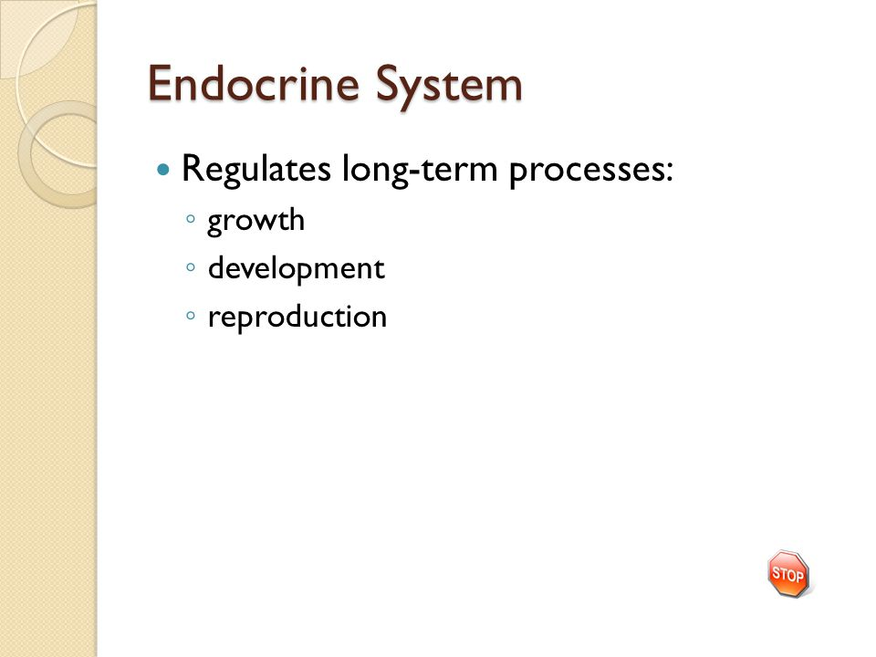Endocrine System Regulates long-term processes: ◦ growth ◦ development ◦ reproduction