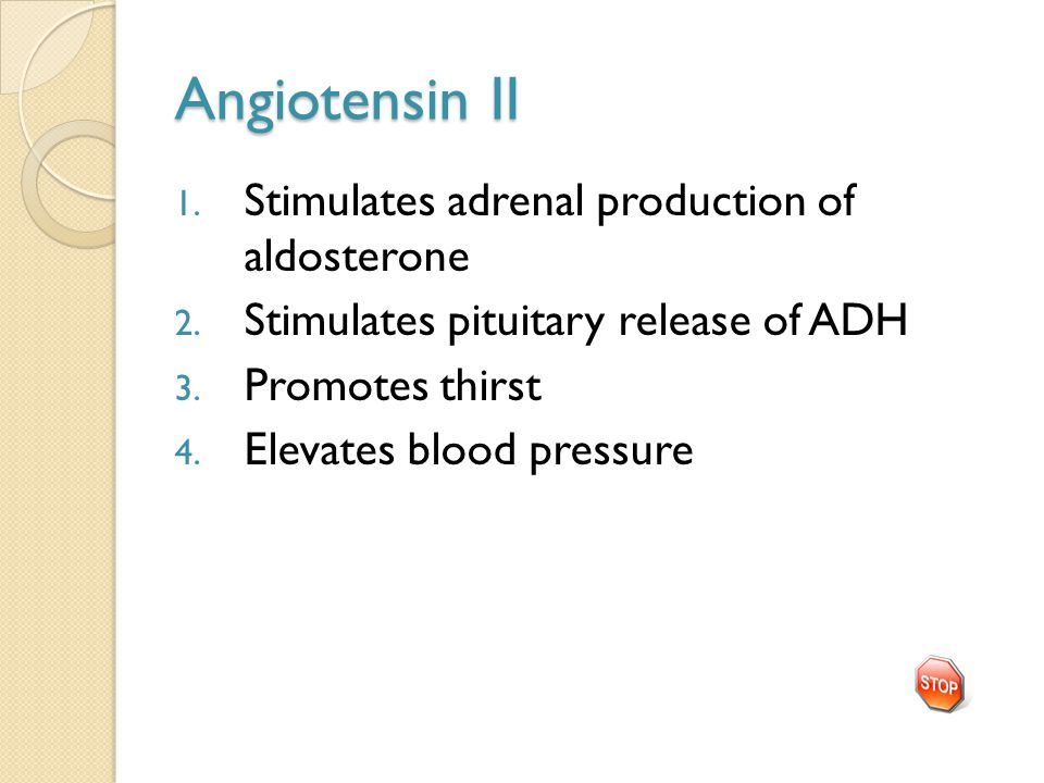 Angiotensin II 1. Stimulates adrenal production of aldosterone 2. Stimulates pituitary release of ADH 3. Promotes thirst 4. Elevates blood pressure