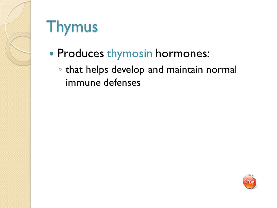 Thymus Produces thymosin hormones: ◦ that helps develop and maintain normal immune defenses
