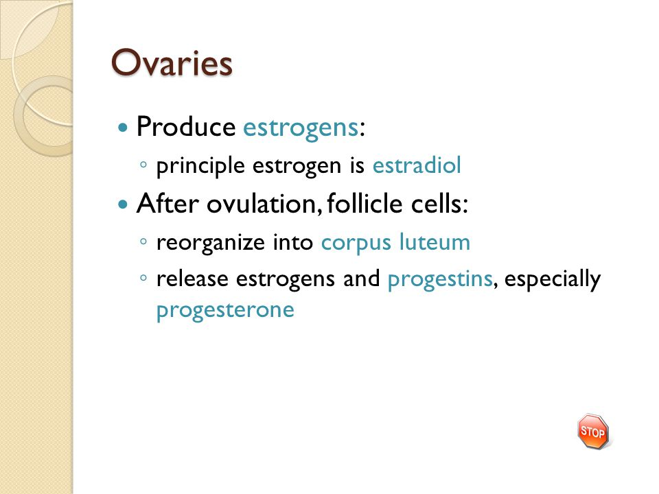 Ovaries Produce estrogens: ◦ principle estrogen is estradiol After ovulation, follicle cells: ◦ reorganize into corpus luteum ◦ release estrogens and progestins, especially progesterone
