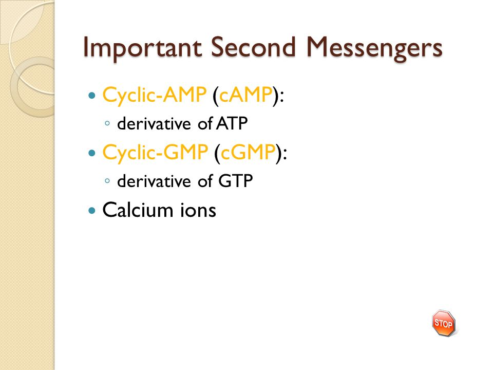 Important Second Messengers Cyclic-AMP (cAMP): ◦ derivative of ATP Cyclic-GMP (cGMP): ◦ derivative of GTP Calcium ions