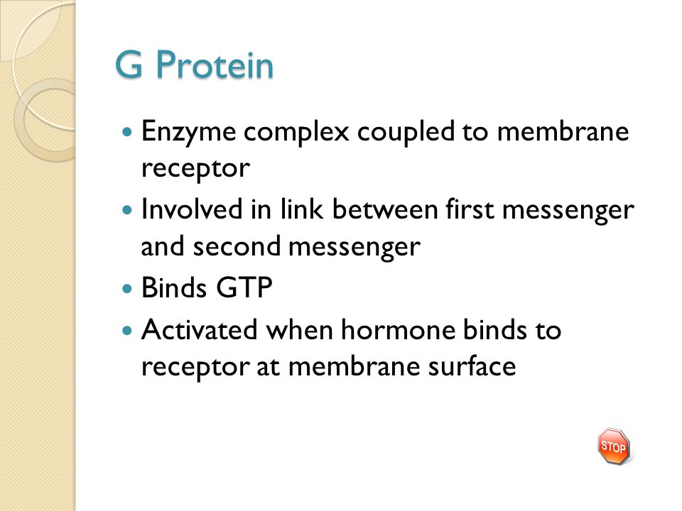 G Protein Enzyme complex coupled to membrane receptor Involved in link between first messenger and second messenger Binds GTP Activated when hormone b