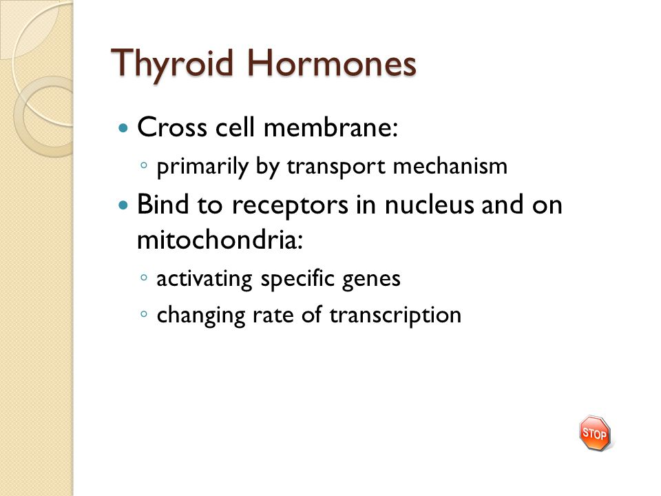 Thyroid Hormones Cross cell membrane: ◦ primarily by transport mechanism Bind to receptors in nucleus and on mitochondria: ◦ activating specific genes ◦ changing rate of transcription