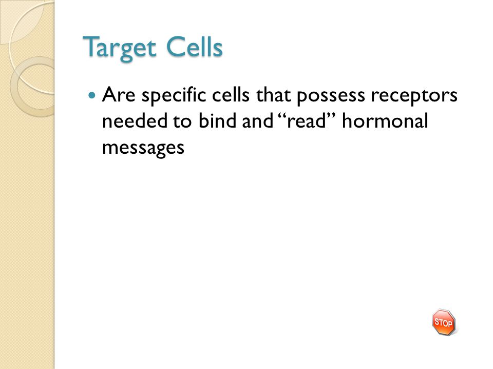 Target Cells Are specific cells that possess receptors needed to bind and read hormonal messages
