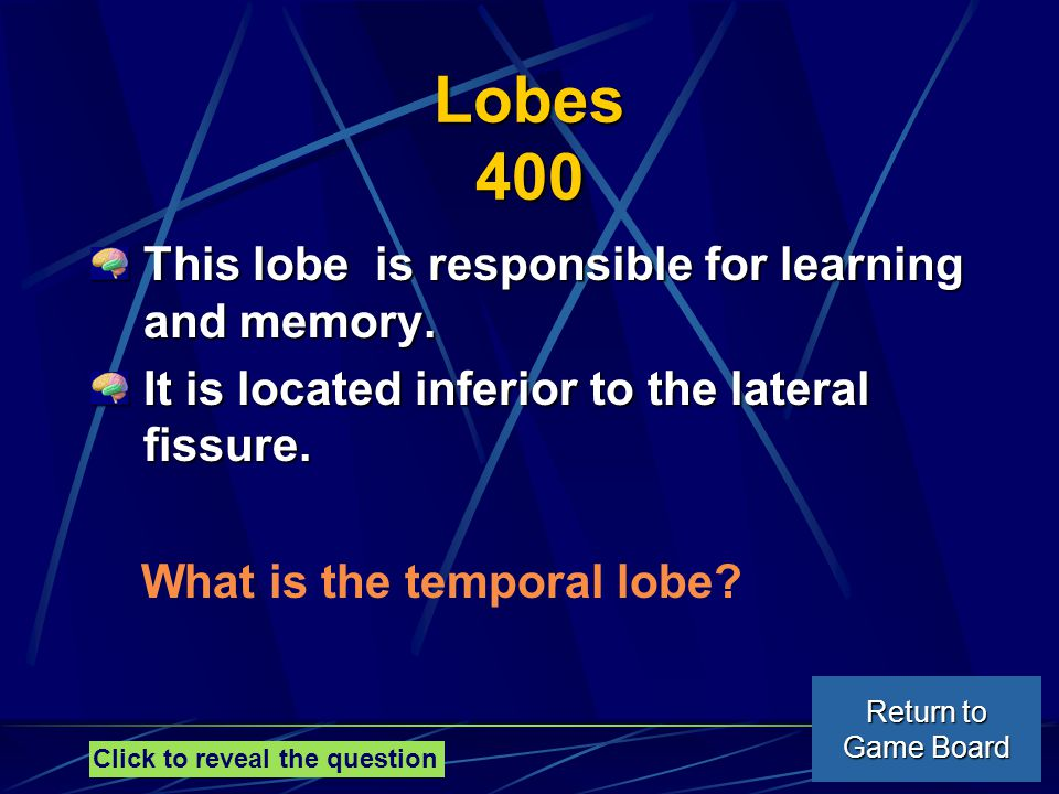 Lobes 400 This lobe is responsible for learning and memory.