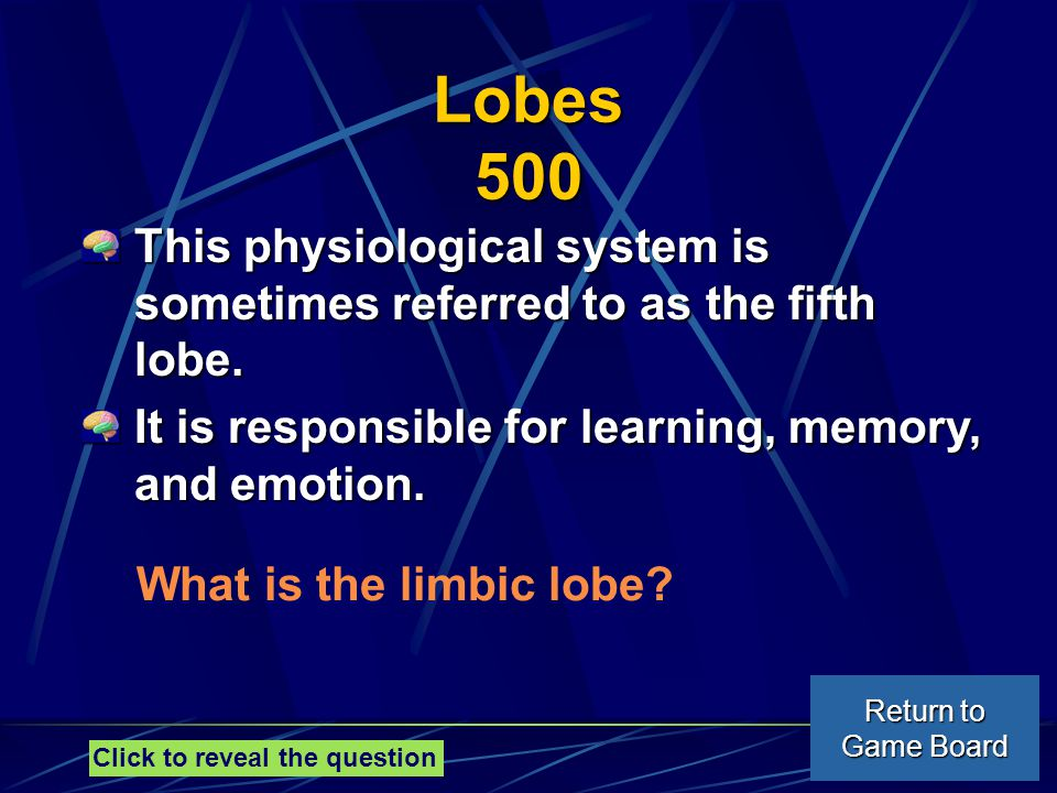 Lobes 500 This physiological system is sometimes referred to as the fifth lobe.