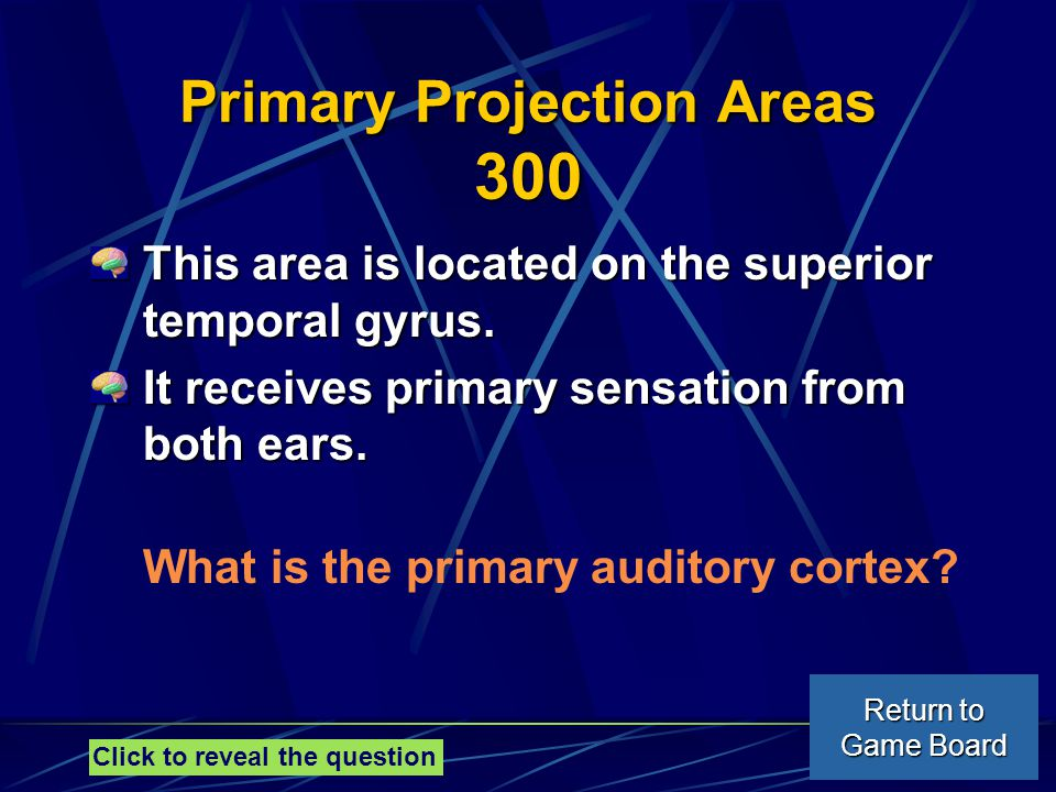 Primary Projection Areas 300 This area is located on the superior temporal gyrus.