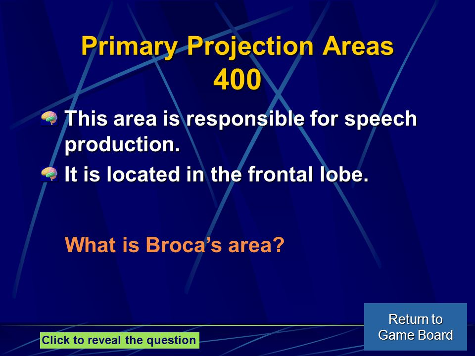 Primary Projection Areas 400 This area is responsible for speech production.