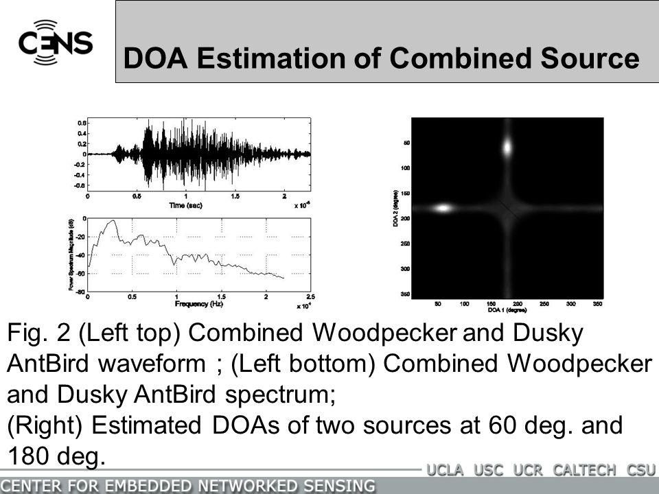 Project 4: Separation of Two Sources by Beamforming for Bio-Complexity Problems Fig. 1 (Left top) Woodpecker waveform; (Right top) Dusky AntBird wavef