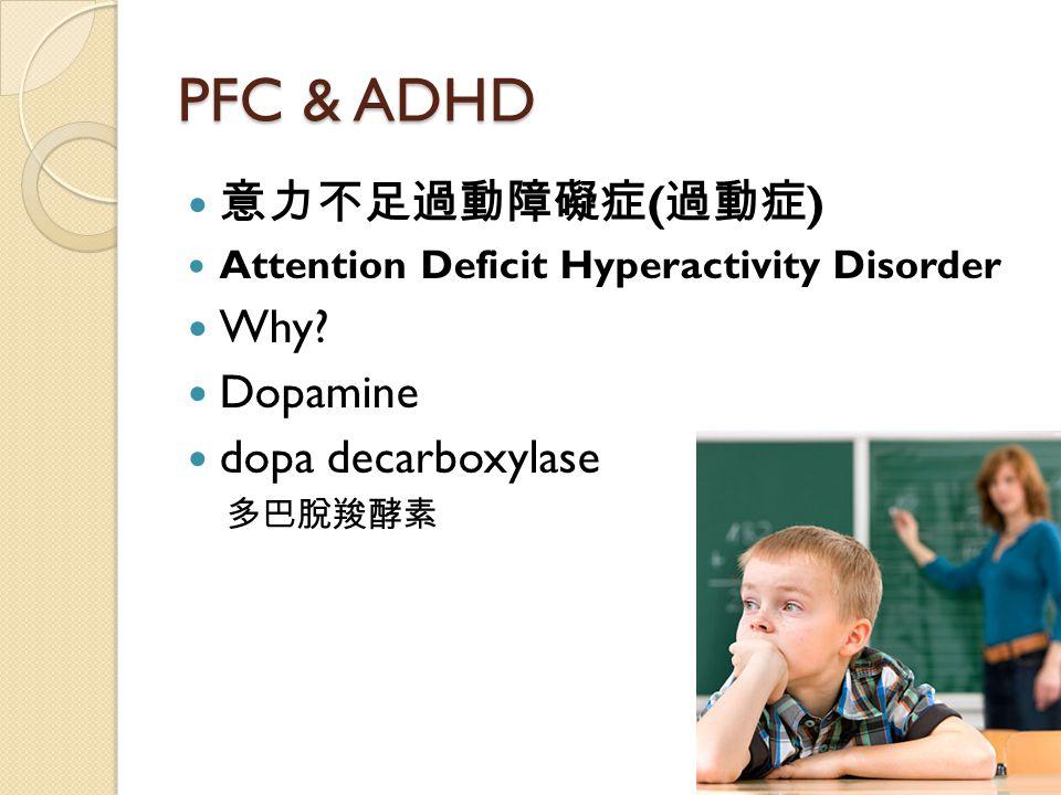 PFC & ADHD 意力不足過動障礙症 ( 過動症 ) Attention Deficit Hyperactivity Disorder Why? Dopamine dopa decarboxylase 多巴脫羧酵素