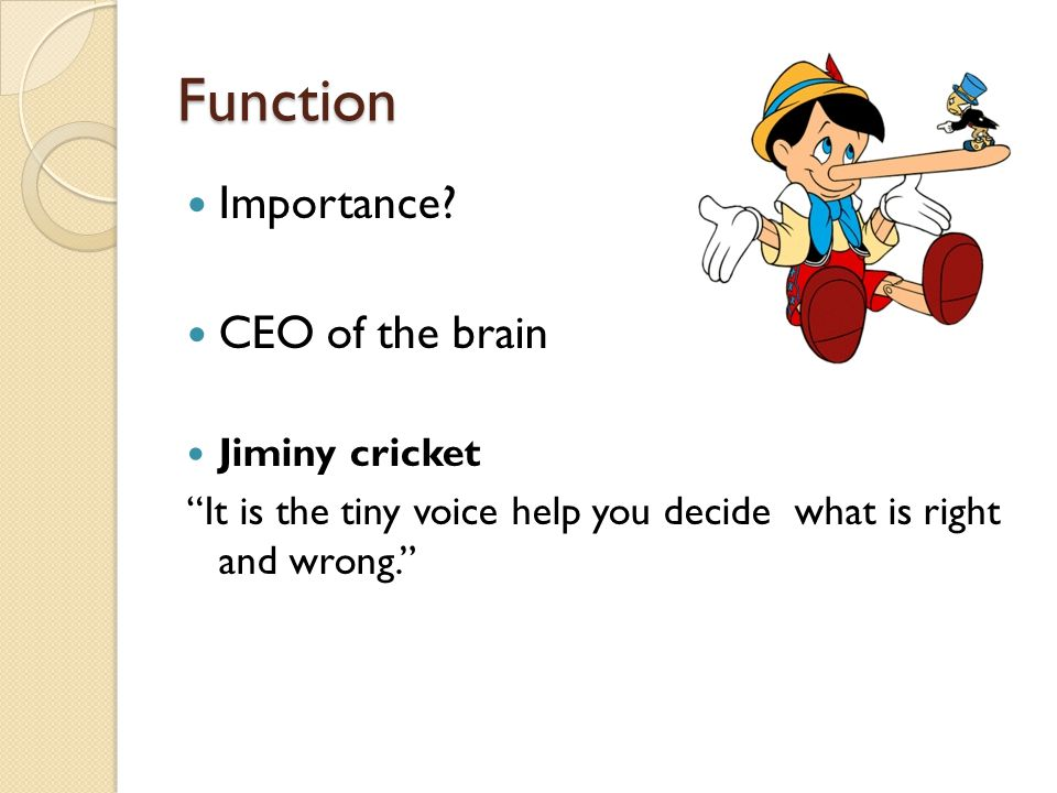 """Function Importance? CEO of the brain Jiminy cricket """"It is the tiny voice help you decide what is right and wrong."""""""