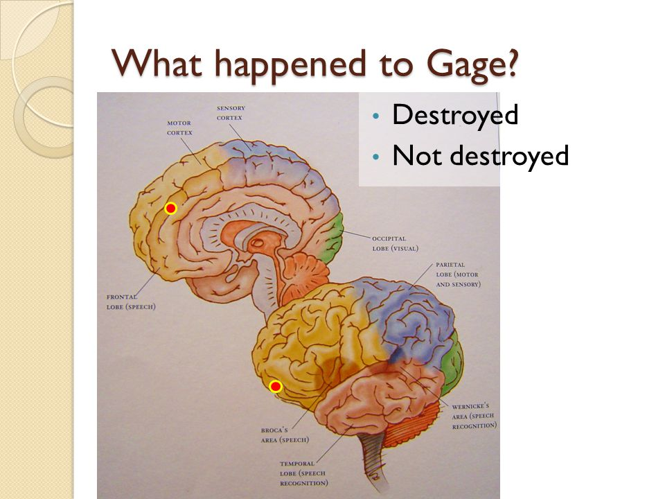 What happened to Gage Destroyed Not destroyed
