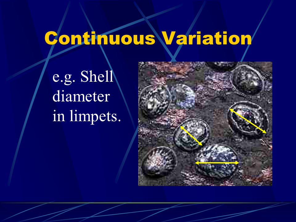 Continuous Variation e.g. Shell diameter in limpets.