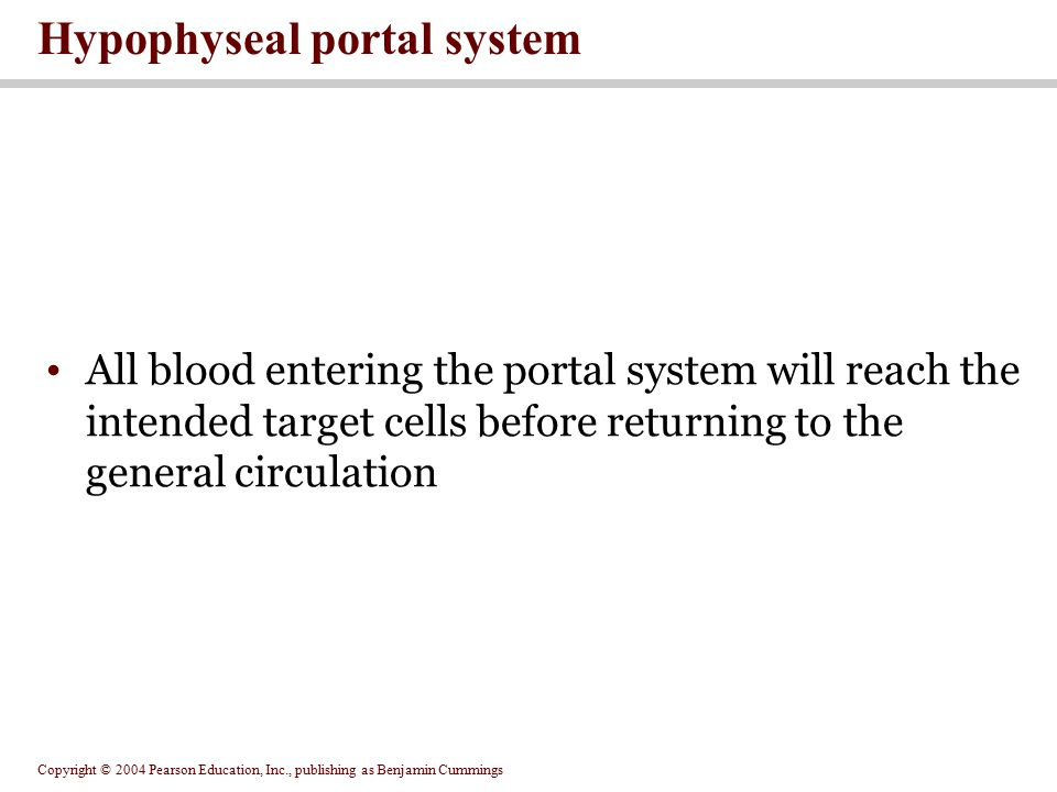 Copyright © 2004 Pearson Education, Inc., publishing as Benjamin Cummings All blood entering the portal system will reach the intended target cells before returning to the general circulation Hypophyseal portal system
