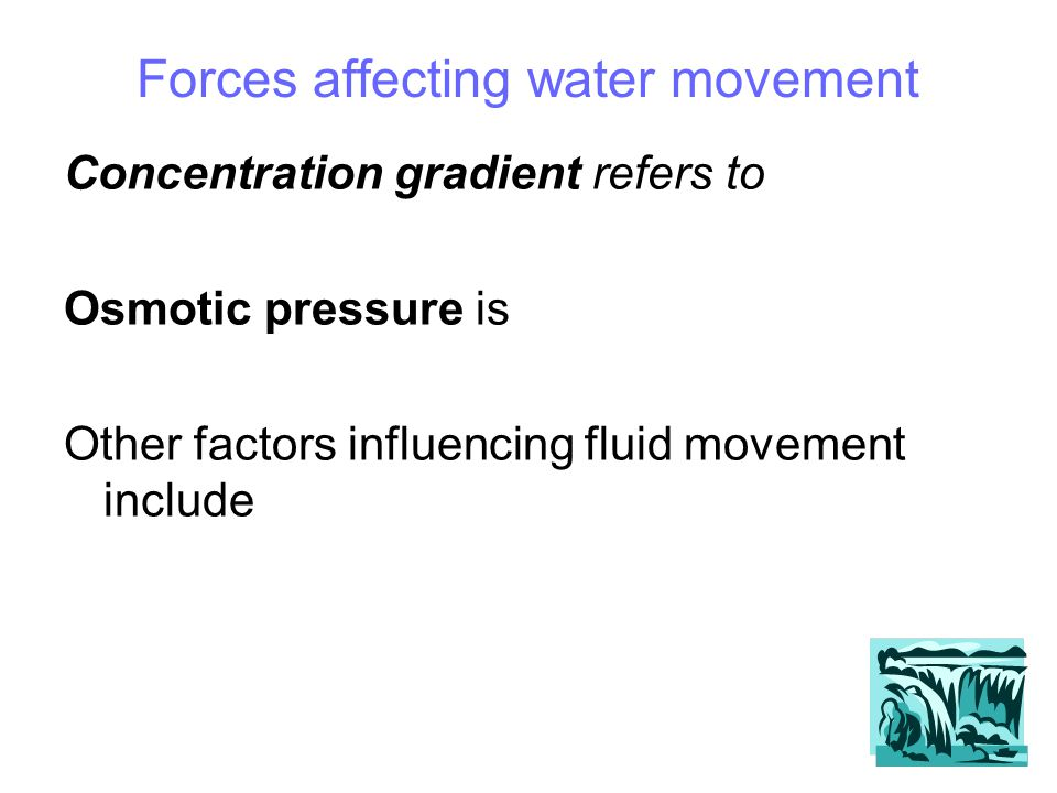 Forces affecting water movement Concentration gradient refers to Osmotic pressure is Other factors influencing fluid movement include