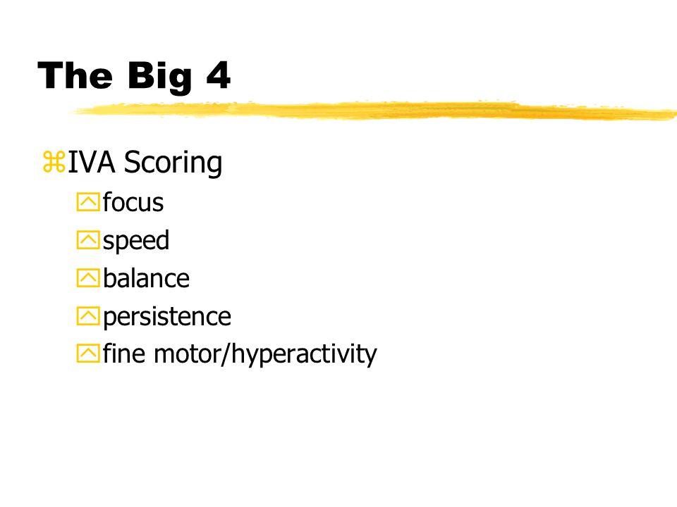 The Big 4 zIVA Scoring yfocus yspeed ybalance ypersistence yfine motor/hyperactivity