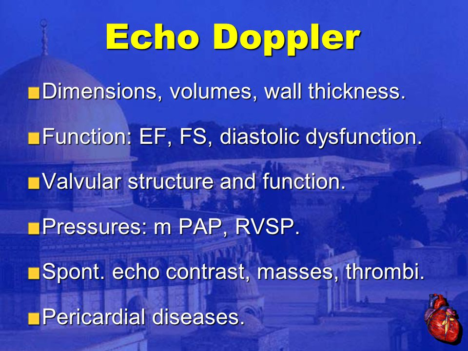 Echo Doppler Dimensions, volumes, wall thickness.Function: EF, FS, diastolic dysfunction.