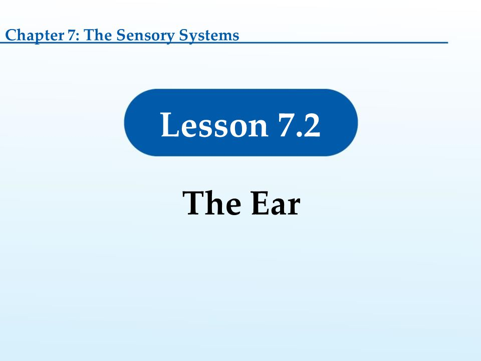 Lesson 7.2 The Ear Chapter 7: The Sensory Systems