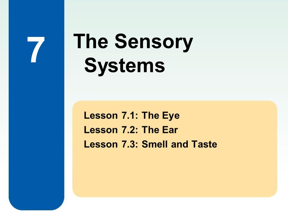 7 Lesson 7.1: The Eye Lesson 7.2: The Ear Lesson 7.3: Smell and Taste The Sensory Systems