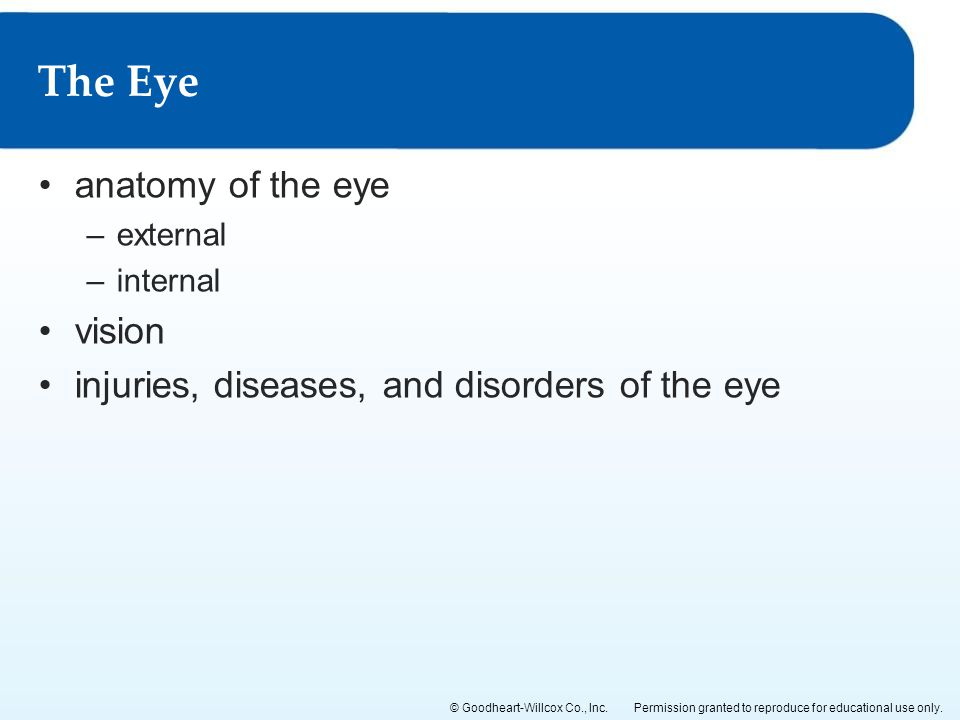 Permission granted to reproduce for educational use only.© Goodheart-Willcox Co., Inc. anatomy of the eye –external –internal vision injuries, disease