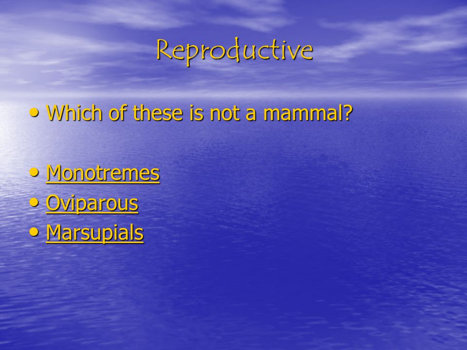 Reproductive Which of these is not a mammal. Which of these is not a mammal.
