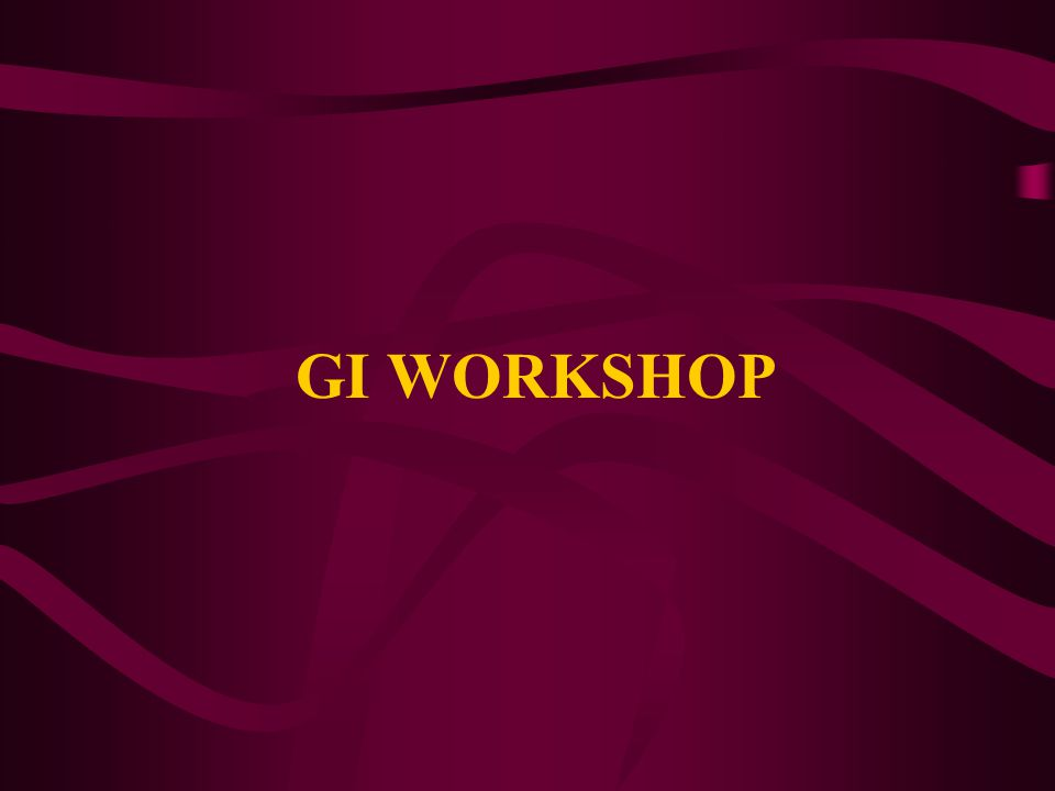 GI WORKSHOP
