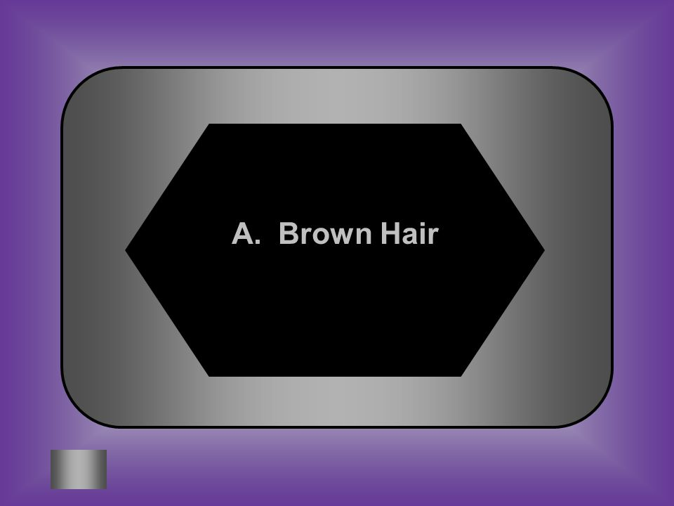 A:B: Brown hair Attached ear lobe C:D: Widows Peak Rolling Tongue #12 Traits# of student exhibit the trait Brown hair30 Attached ear lobe9 Widows Peak14 Tongue Rolling22 Which of the traits in this chart is most likely a dominant trait