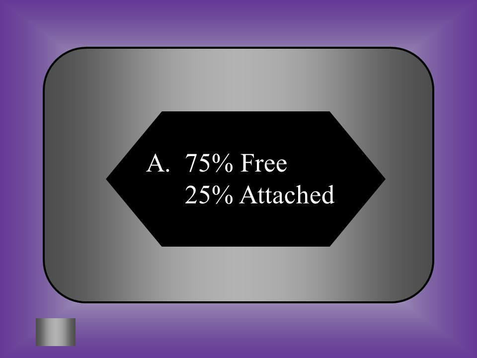 A:B: 75% Free 25% Attached C:D: 25% Free 75% Attached 100% Free 0% Attached F – Free f - Attached Ff F f FF Ff ff #14 In people, free earlobes are dominant and attached earlobes are recessive.