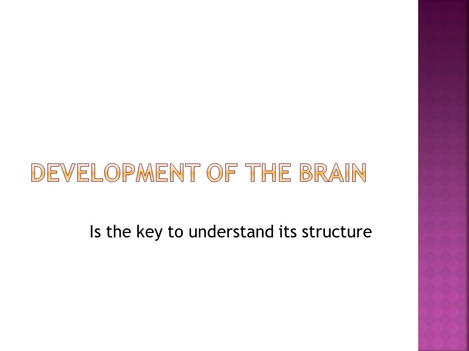 Is the key to understand its structure