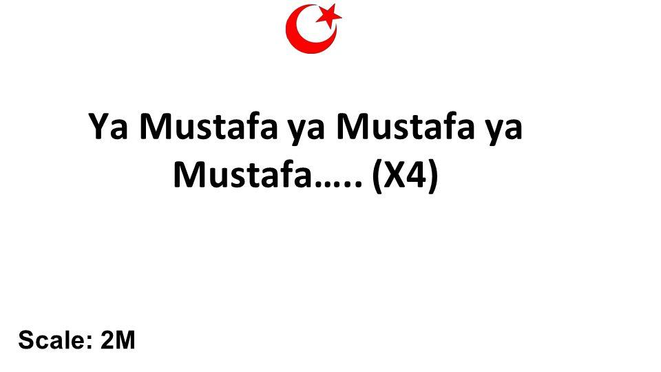 Ya Mustafa ya Mustafa ya Mustafa….. (X4) Scale: 2M