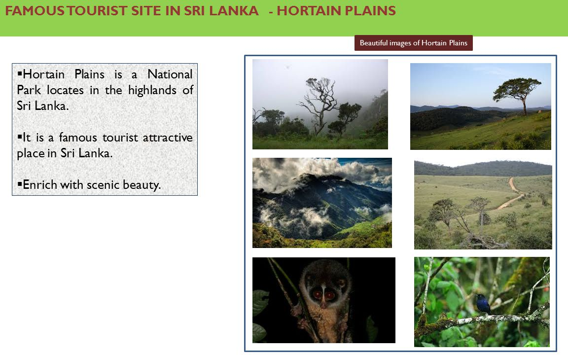 FAMOUS TOURIST SITE IN SRI LANKA - HORTAIN PLAINS  Hortain Plains is a National Park locates in the highlands of Sri Lanka.