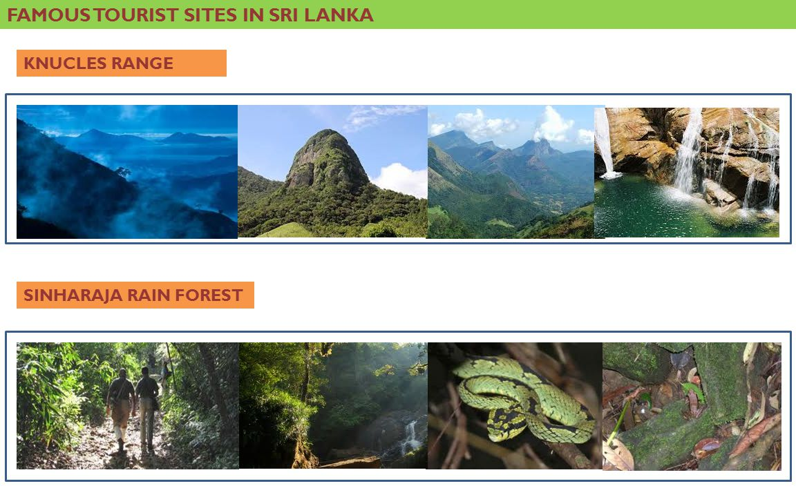 FAMOUS TOURIST SITES IN SRI LANKA KNUCLES RANGE SINHARAJA RAIN FOREST
