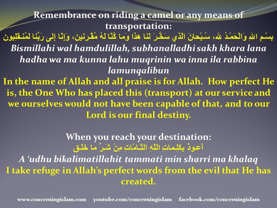 Remembrance on riding a camel or any means of transportation: بِسْـمِ اللهِ وَالْحَمْـدُ لله، سُـبْحانَ الّذي سَخَّـرَ لَنا هذا وَما كُنّا لَهُ مُقْـر