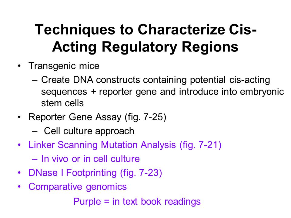 Techniques to Characterize Cis- Acting Regulatory Regions Transgenic mice –Create DNA constructs containing potential cis-acting sequences + reporter gene and introduce into embryonic stem cells Reporter Gene Assay (fig.