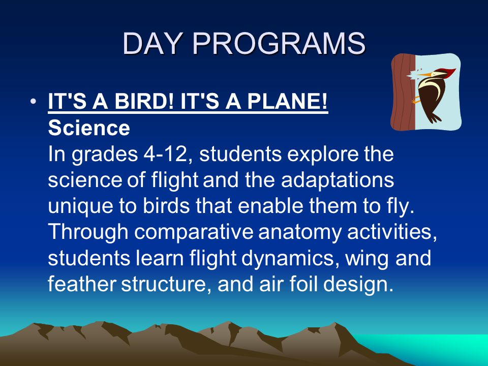 DAY PROGRAMS IT S A BIRD. IT S A PLANE.