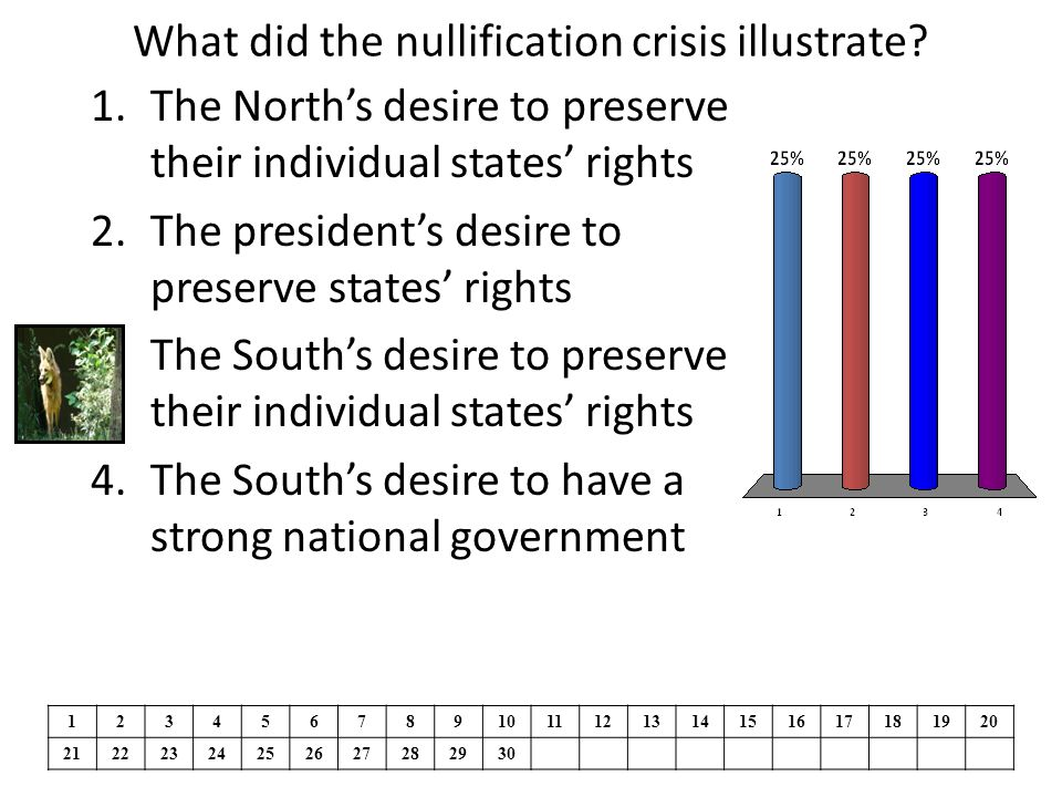 What did the nullification crisis illustrate.