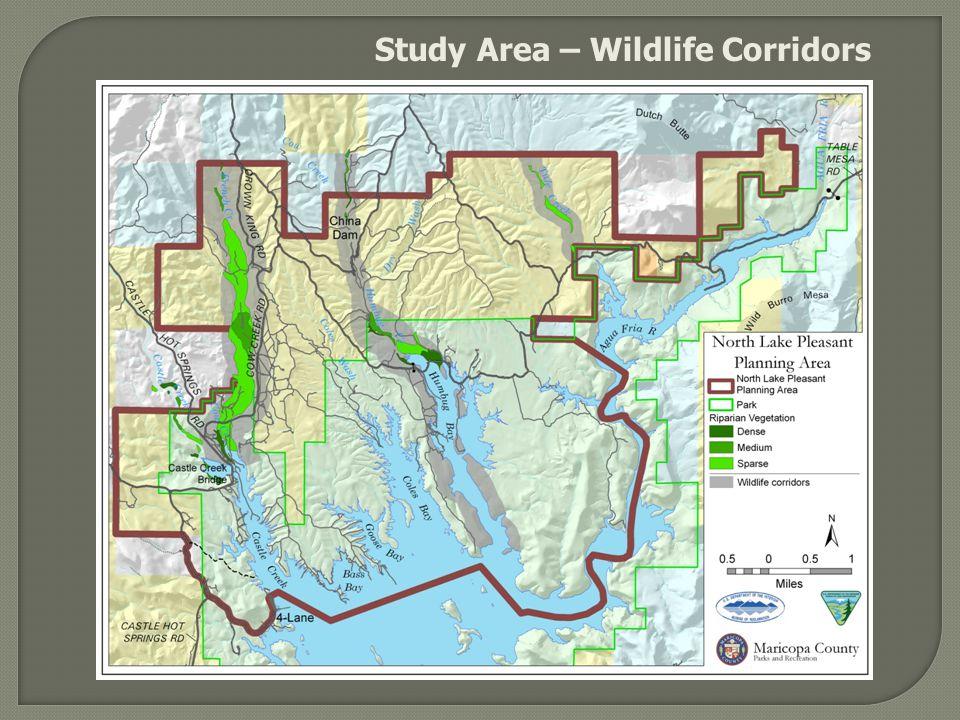 Study Area – Wildlife Corridors