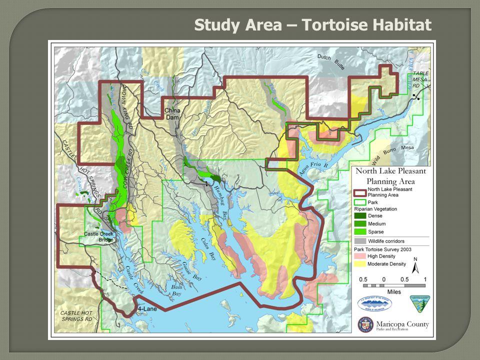 Study Area – Tortoise Habitat
