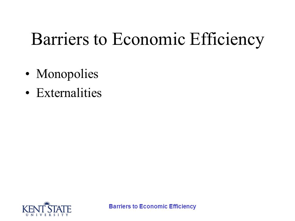 Barriers to Economic Efficiency Externalities- Examples Positive Externalities –An apiary adjacent to an orchard would increase its yield and profit.
