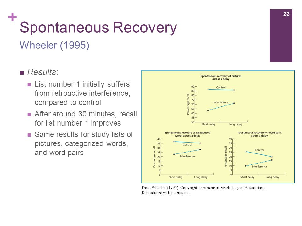 + Spontaneous Recovery Results: List number 1 initially suffers from retroactive interference, compared to control After around 30 minutes, recall for list number 1 improves Same results for study lists of pictures, categorized words, and word pairs Wheeler (1995) From Wheeler (1995).