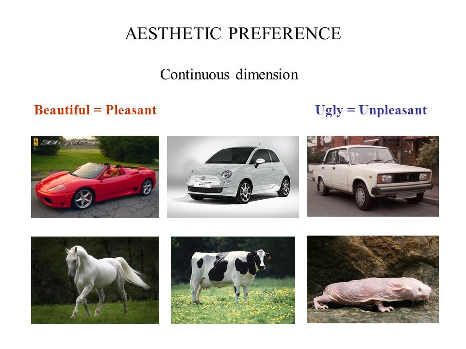 Beautiful = PleasantUgly = Unpleasant AESTHETIC PREFERENCE Continuous dimension