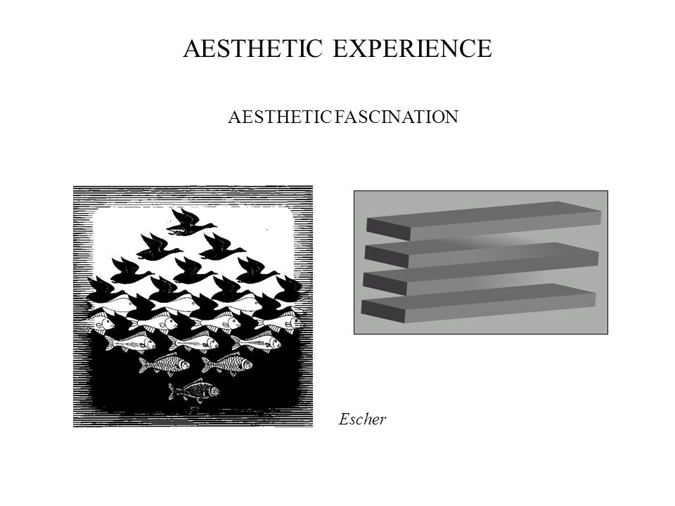 Escher AESTHETIC EXPERIENCE AESTHETIC FASCINATION