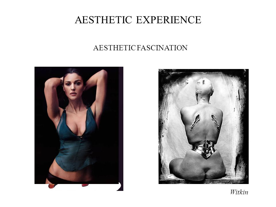 Witkin AESTHETIC EXPERIENCE AESTHETIC FASCINATION