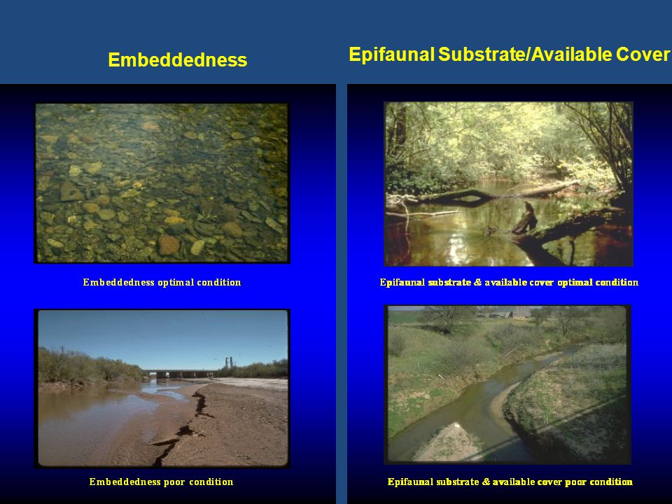 8 Embeddedness Epifaunal Substrate/Available Cover