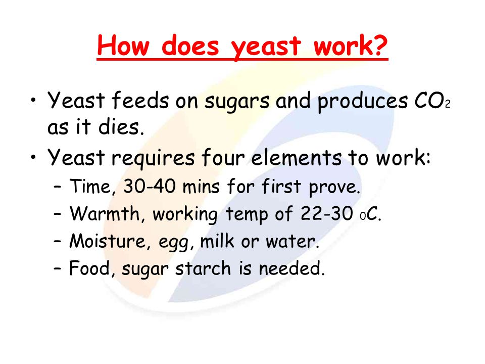 Why is it important.Bread products are an important basic feature of our diet.